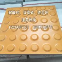 盲道磚_應用于地鐵品質高的陶瓷盲道磚圖片
