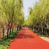 彩色沥青-彩色透水沥青-透水沥青-彩色路面-彩色沥青混凝土