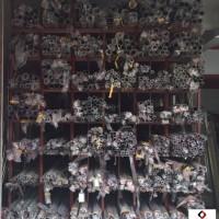 天星牌304不銹鋼 惠州不銹鋼材料批發品種齊全質量保證圖片