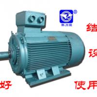 YE2电机重庆赛力盟生产 YE2电动机生产厂家价格