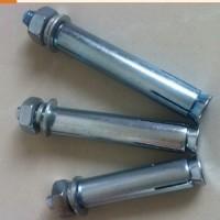 国标化学锚栓 化学膨胀螺栓镀锌固定化学螺栓